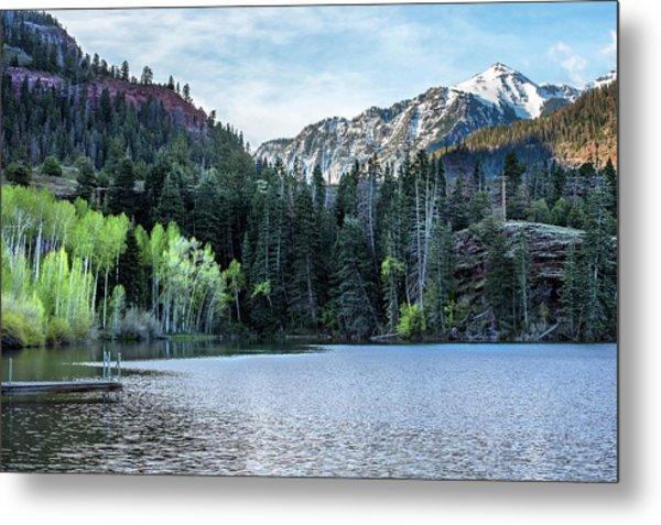 Metal Print featuring the photograph Spring Green by Angela Moyer