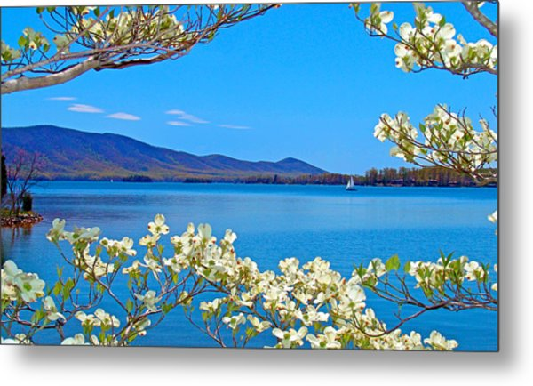 Spring Has Sprung 2 Smith Mountain Lake Metal Print