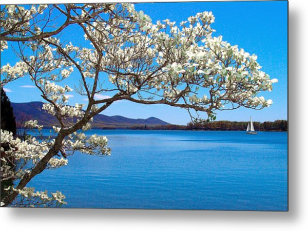 Spring Has Sprung Smith Mountain Lake Metal Print