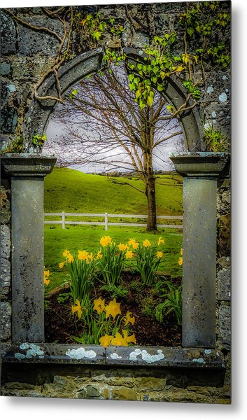 Metal Print featuring the photograph  Spring In Ballynacally, County Clare by James Truett