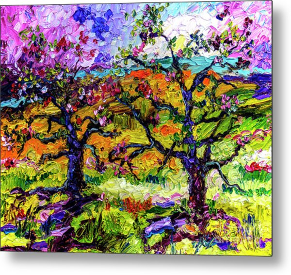 Spring In Provence Pink Blossom Trees Metal Print