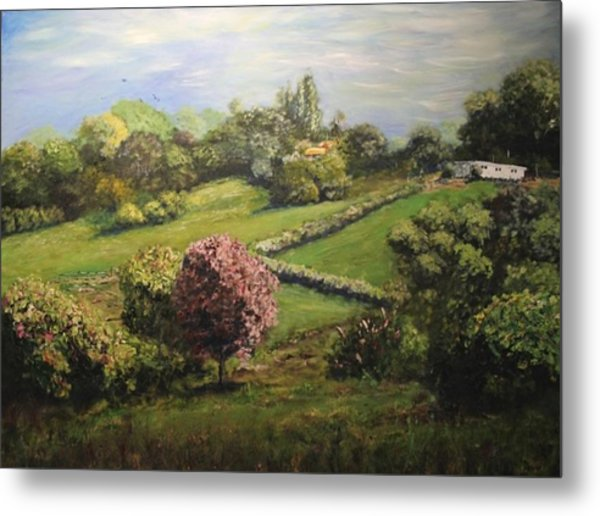 Spring In The Hills Metal Print by Dave Manning