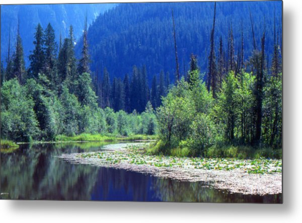Spring In The Mountains 3  Metal Print by Lyle Crump