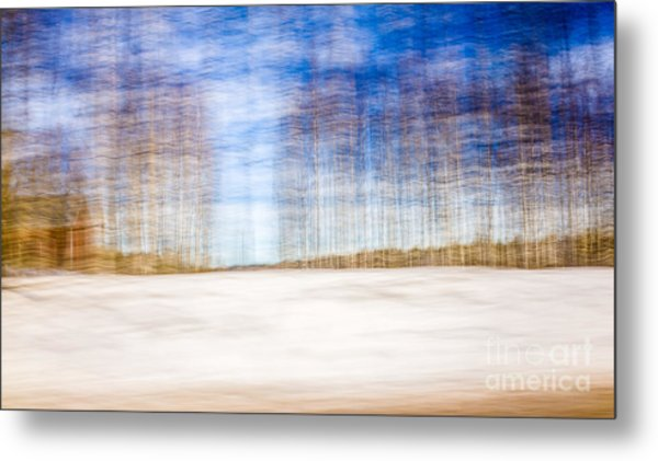 Spring In The Slumberland Forest Metal Print