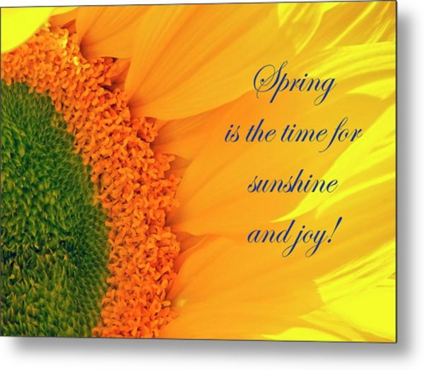 Spring Is The Time Metal Print