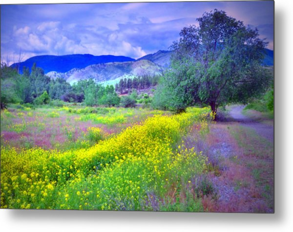 Spring Morning Along The Channel Parkway Metal Print