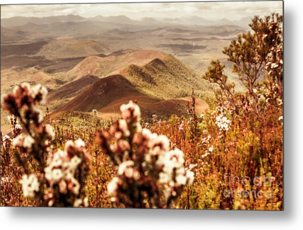 Spring Mountain Blossoms Metal Print