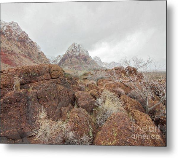 Spring Mountain Ranch Metal Print