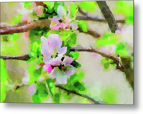 Spring On A Branch Metal Print