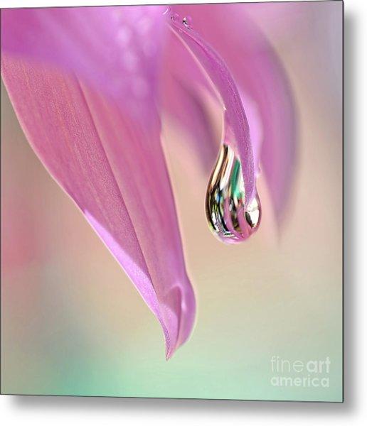 Spring Raindrop By Kaye Menner Metal Print