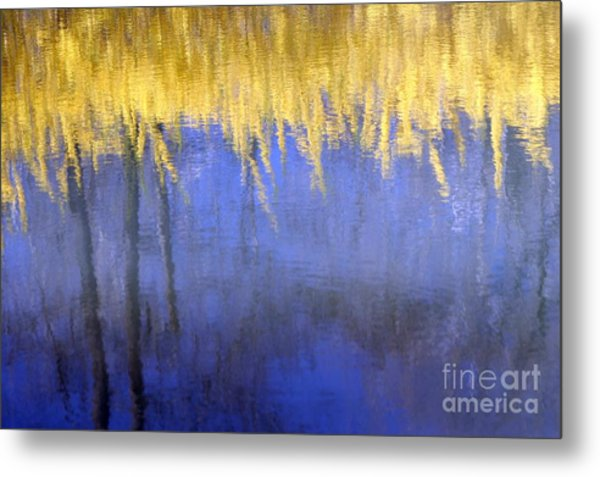 Spring Reflections Metal Print