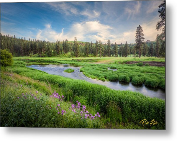 Spring River Valley Metal Print
