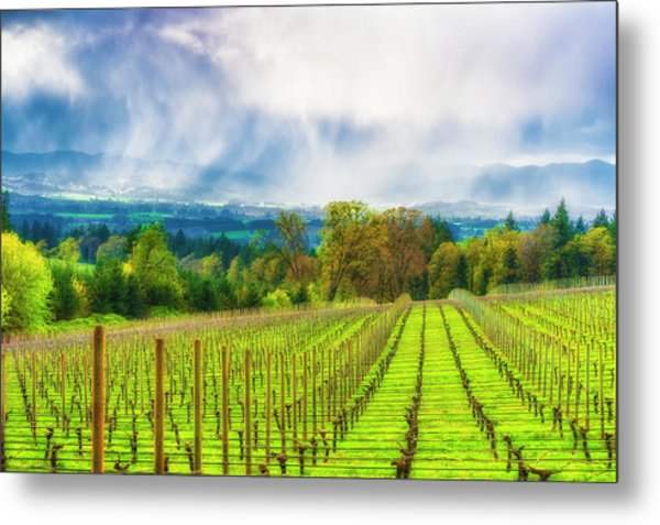 Spring Showers In The Vineyards  Metal Print