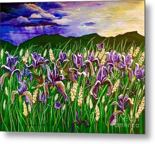 Spring Storm  Iris Fields Metal Print