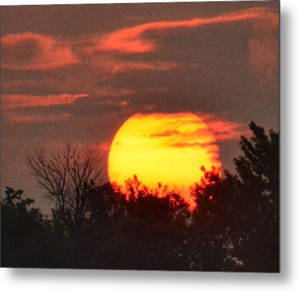 Spring Sunrise In Kentucky Metal Print