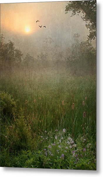 Spring Sunrise In The Valley Metal Print