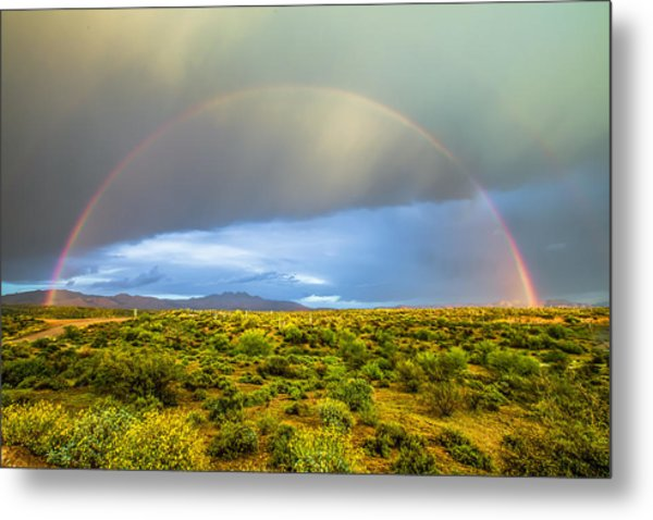 Spring Time In The Desert Metal Print by Stacy LeClair