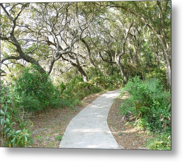 Spring Walkway Metal Print by Bea Godwin