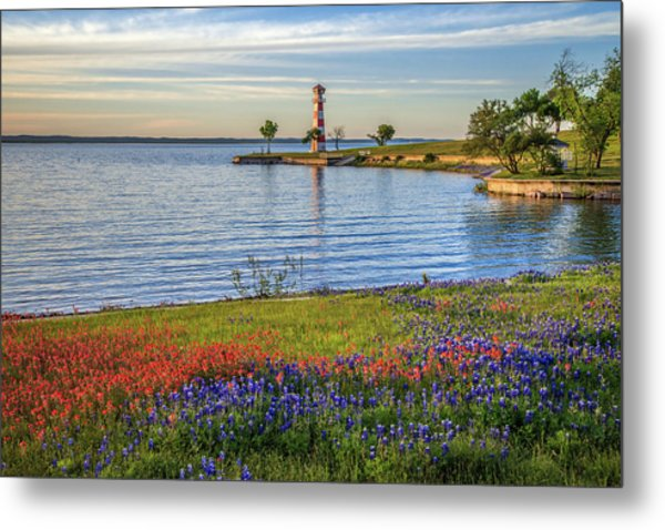 Spring Wildflowers Of Lake Buchanan Metal Print