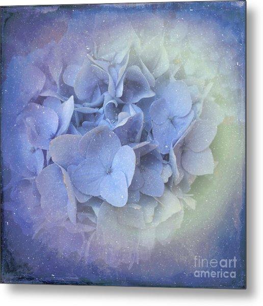 Springtime Hydrangea Metal Print