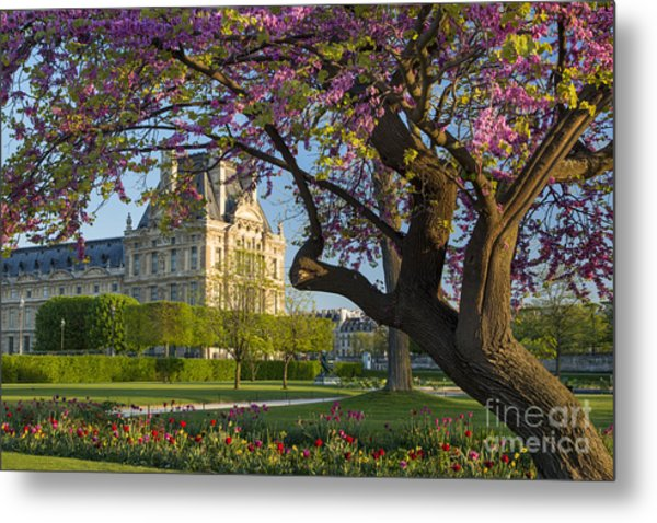 Metal Print featuring the photograph Springtime In Paris by Brian Jannsen