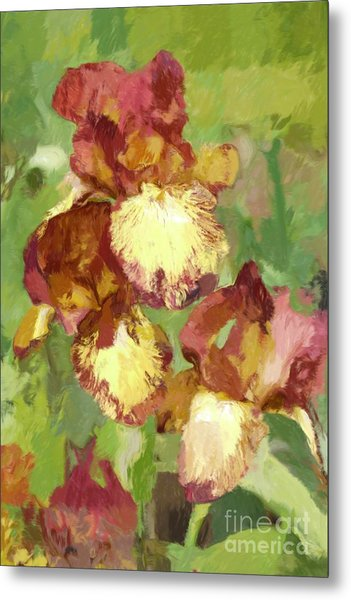Springtime Iris Metal Print by Susan  Lipschutz