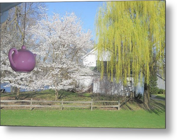 Springtime Outside Our House Metal Print by Deborah Finley