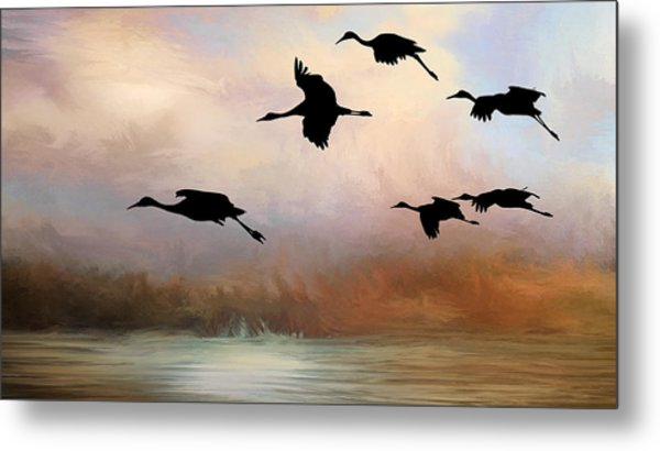 Squadron Of Sandhill Cranes, Bosque Del Apache, New Mexico Metal Print