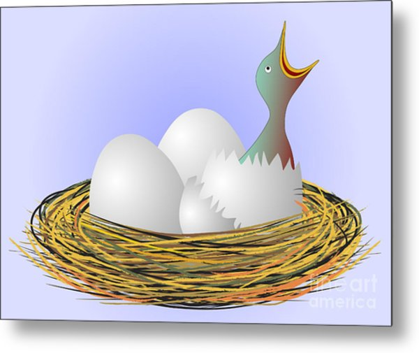 Squeaker Hatching From Eggs Metal Print