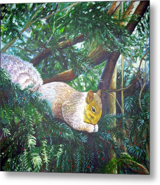 Squirrel Snacking Metal Print