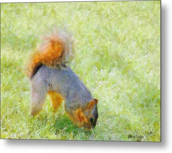 Squirrelly Metal Print