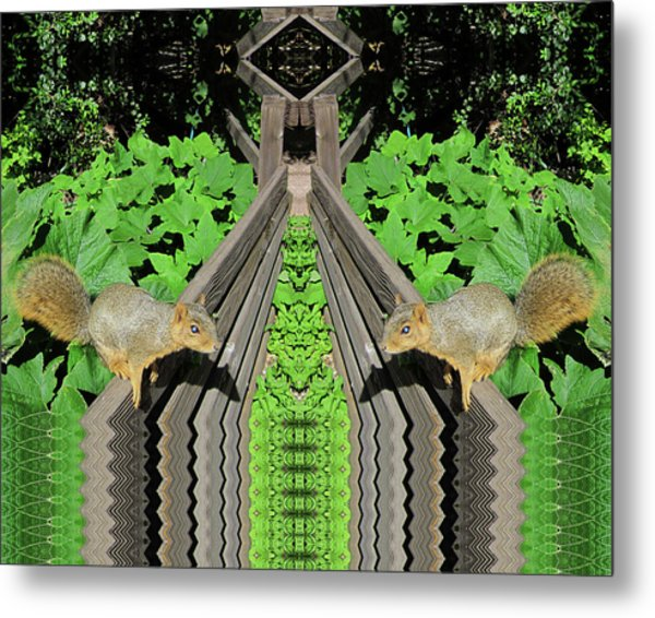 Squirrels On Fence In Surreal World Metal Print