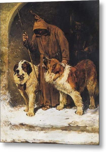 St. Bernards To The Rescue Metal Print