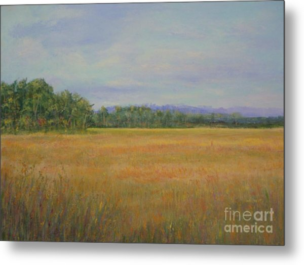 St. Marks Refuge I - Autumn Metal Print