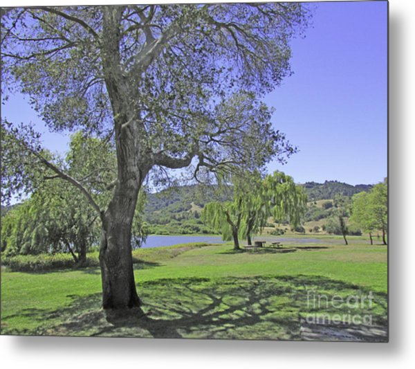 Stafford Lake Beauty Metal Print