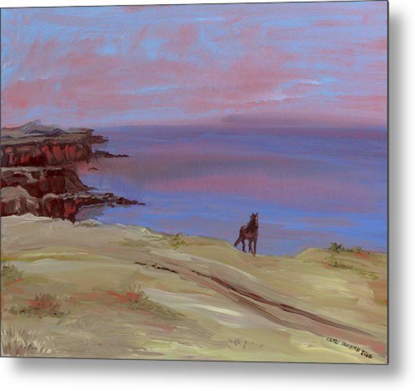 Stallion At Dingle Bay Metal Print by Cathy France