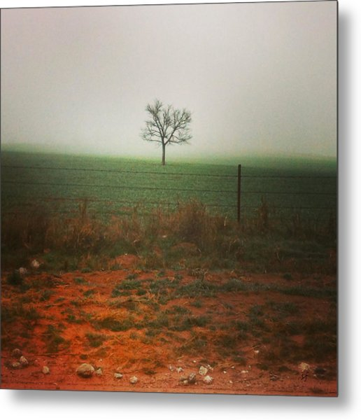 Standing Alone, A Lone Tree In The Fog. Metal Print
