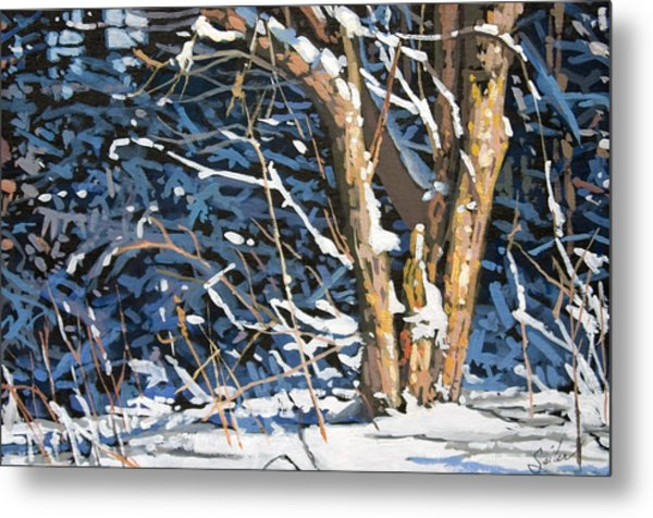 Standing Alone Metal Print by Larry Seiler
