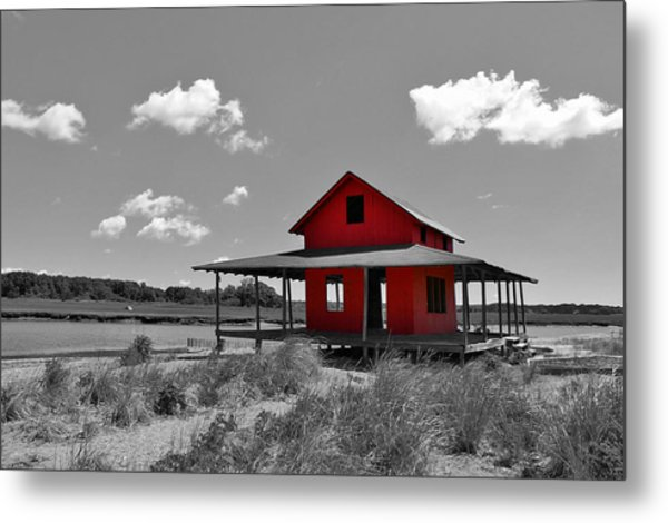 Standing Out All Alone Metal Print