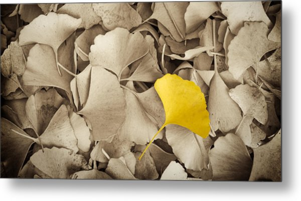 Standing Out In A Crowd Metal Print