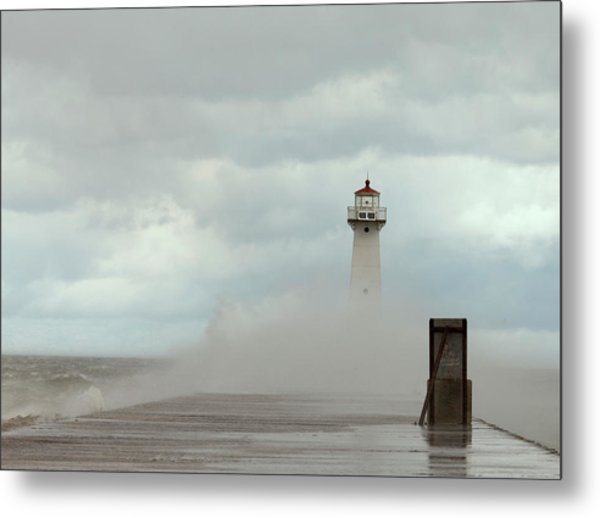 Standing Tall Against The Storm Metal Print