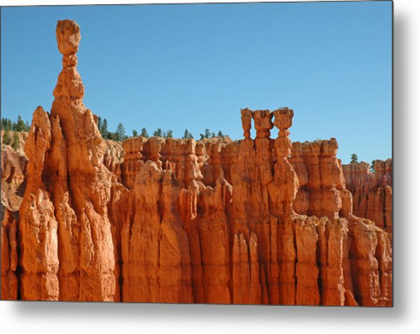 Standing Tall In Bryce Canyon Metal Print
