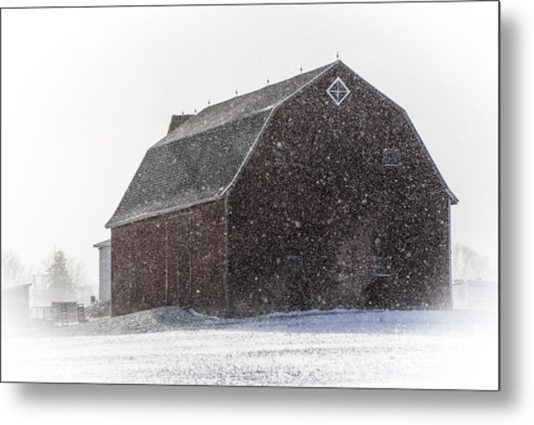 Standing Tall In The Snow Metal Print