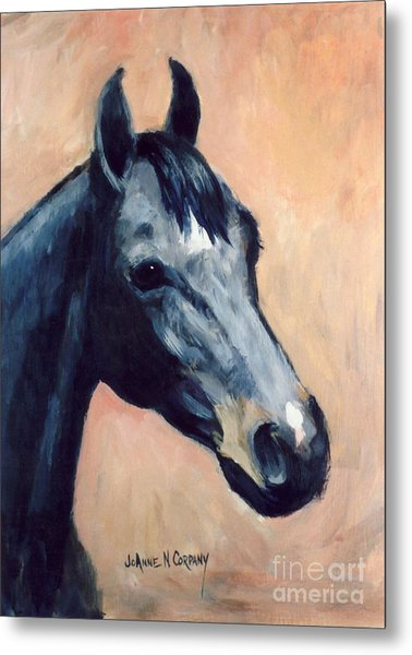 Star    Yearling Filly Metal Print