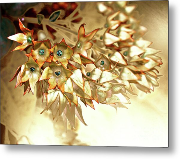 Star Fade Autumn Metal Print