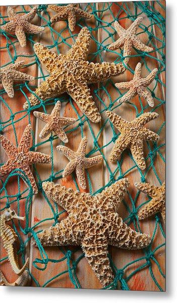 Starfish In Net Metal Print