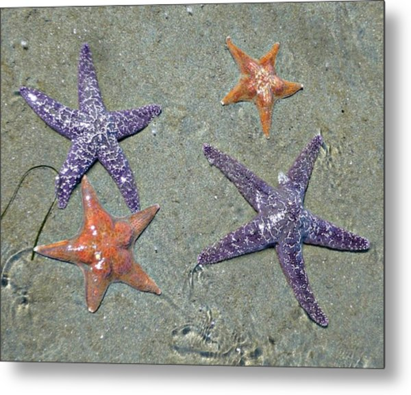 Metal Print featuring the photograph Starfish Party by 'REA' Gallery