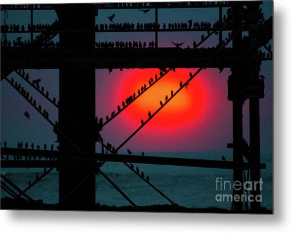 Starlings Against The Setting Sun Metal Print