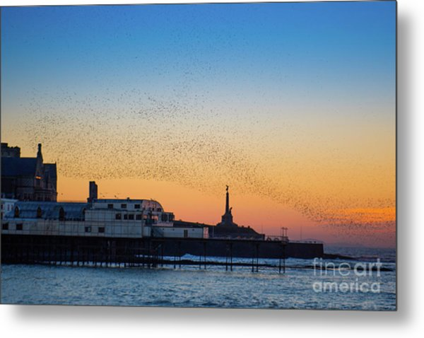 Starlings At Sunset In Aberystwyth Metal Print