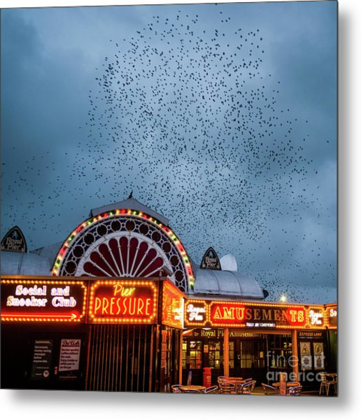 Starlings Over The Neon Lights Of Aberystwyth Pier Metal Print
